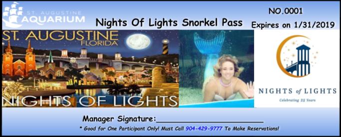 NightsOfLightsAqua